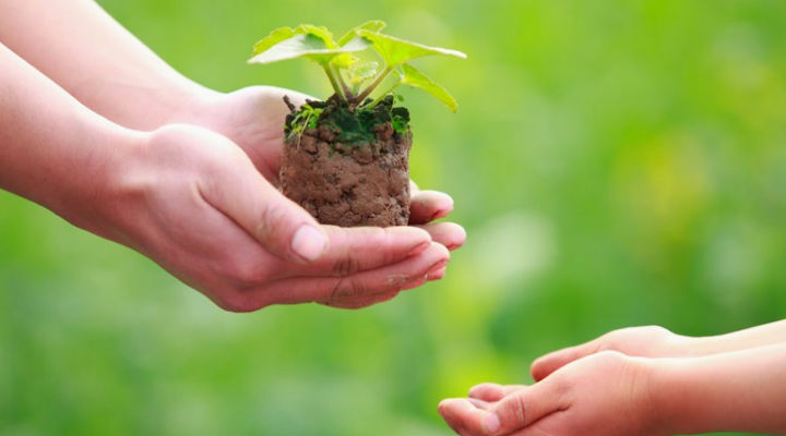 Three Eco-friendly Lifestyle Changes That We Can Make Today