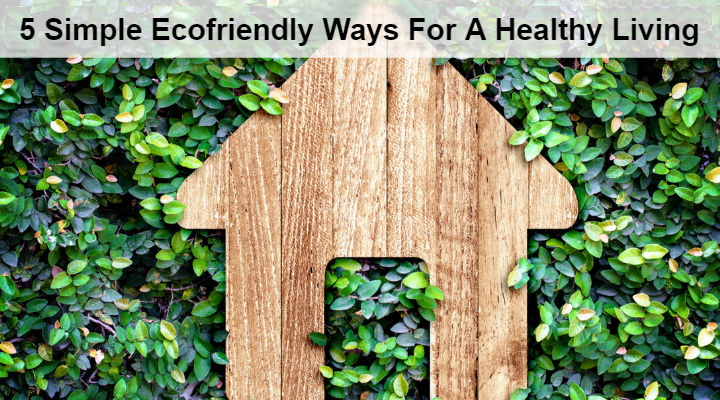 5 Simple Ecofriendly Ways For A Healthy Living