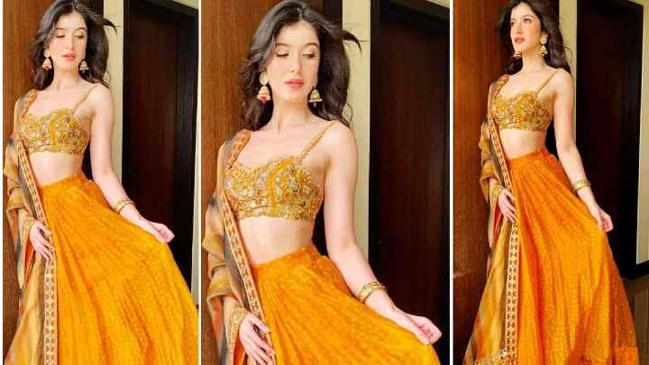 Shanaya Kapoor looks like a diva in mustard polka dot lehenga worth Rs 78,000 for sister Rhea's wedding